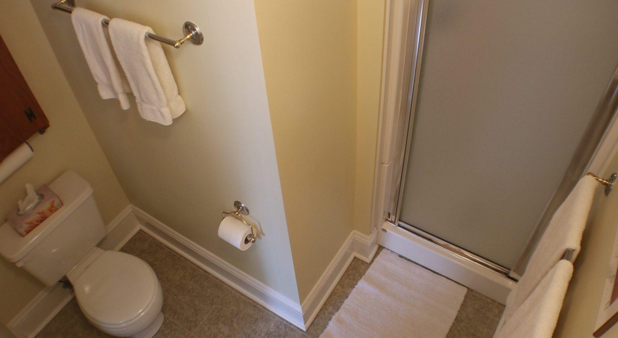 Warn House Princess Room Ensuite Shower
